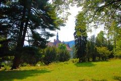 Замок на крае леса Стоковые Фотографии RF