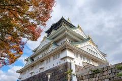 Замок Осака архитектуры с деревом осени Стоковая Фотография