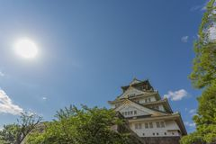 Замок Осака в солнечном дне Стоковая Фотография