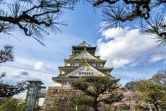 Замок Осака в Японии с ветвью дерева в фронте Стоковая Фотография