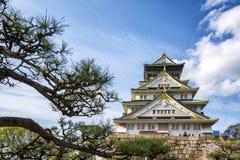 Замок Осака в Японии с ветвью старого дерева в фронте Стоковое Изображение RF