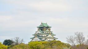 Замок Осака и передний план дерева в Японии Стоковые Изображения