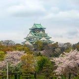 Замок Осака среди Сакуры Стоковые Изображения RF