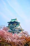 Замок Осака с цветением вишни Японская весна красивая scen Стоковое Изображение RF