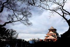 Замок Осака Стоковая Фотография