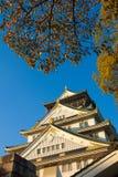 Замок Осака, Стоковое Изображение RF