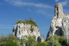 замок осиротил Стоковое Фото