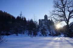 Замок отрубей Стоковые Фотографии RF