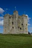 Замок отделки, Ирландия Стоковые Изображения RF