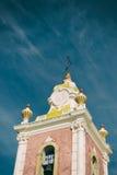 замок Португалия Стоковые Фото