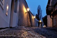 Замок Праги - новый мир стоковые изображения