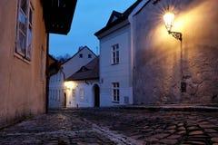 Замок Праги - новый мир Стоковые Изображения RF