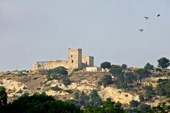 Замок Сан Мишели на холме при 3 pidgeons летая в небо Стоковые Изображения RF