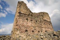 Замок сари стоковая фотография rf