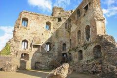 замок средневековый папоротники co Wexford Ирландия стоковое изображение rf