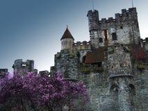 замок средневековый Стоковые Изображения