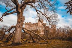 замок старый Стоковое Изображение