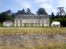 Замок с лошадью стоковое изображение rf