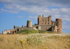 Замок & луг Bamburgh Стоковое Изображение