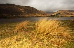 Замок Шотландия Kilchurn Стоковая Фотография