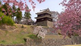 Замок Японии Ueda весной сток-видео
