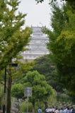 Замок Япония Himeji за деревьями Стоковые Фотографии RF