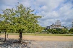Замок Япония Himeji за деревьями Стоковые Изображения RF