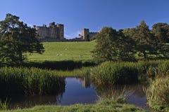замок alnwick Стоковое Изображение RF