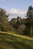 замок alnwick Стоковое Фото