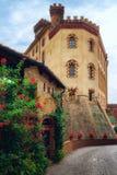 Замок Barolo Пьемонта, Италии стоковое фото rf