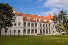 Замок Birzai в Литве Стоковая Фотография RF