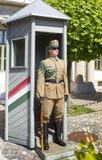 Замок Buda - солдат, гвардеец на предохранителе в переднем дворце ndor ¡ SÃ стоковое фото rf