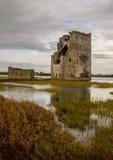 Замок Carrigafoyle Стоковое Изображение RF