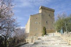 замок chateauneuf du pape Стоковые Изображения RF