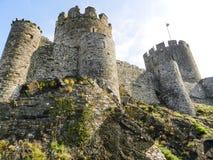 Замок Conwy, Уэльс стоковые изображения rf