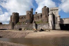 замок conwy Стоковое Изображение RF