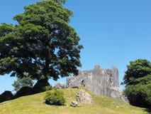 Замок Cowbridge, южный уэльс Стоковая Фотография RF