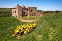 Замок Crichton, Эдинбург, Шотландия Стоковое Изображение