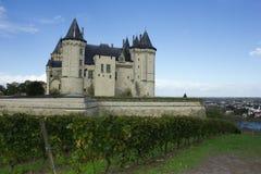 Замок de Saumur, Loire Valley, франция Стоковые Фотографии RF