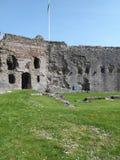 Замок Denbigh стоковое изображение rf
