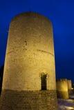 Замок Dourdan, Эссонна Стоковая Фотография RF