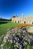 Замок Dunnottar с голубым небом внутри - Stonehaven Стоковая Фотография RF