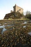 замок dunvegan стоковые фото