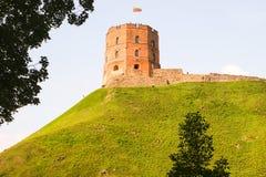 Замок Gediminis. Вильнюс. Стоковые Фотографии RF