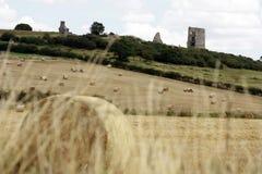 Замок Hadleigh с сеном закладывает на переднем плане Стоковые Изображения RF