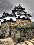 Замок Hikone в Shiga, Японии Стоковое Изображение