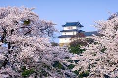 Замок Hikone Стоковое фото RF