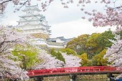 Замок Himeji в сезоне одном зимы Сакуры самого лучшего sightseein Стоковая Фотография RF