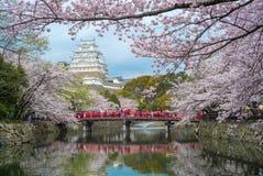 Замок Himeji в hyogo, kansai, Японии Стоковые Изображения RF