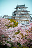 Замок Himeji стоковая фотография rf
